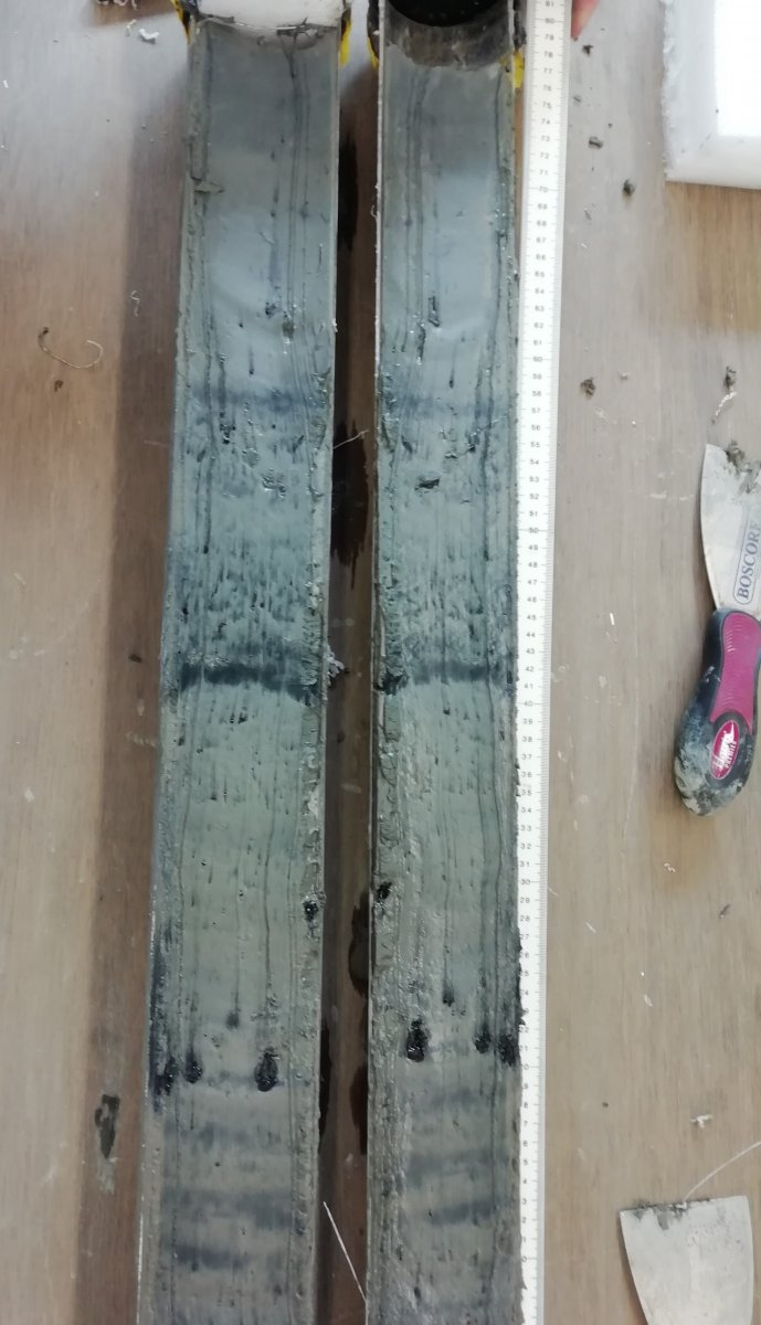 Image 4: A recently split sediment core surface ready for preparation for Itrax and MSCL-XYZ analysis at BOSCORF